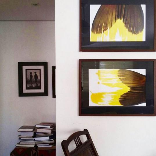 Quadros em papel fotográfico com vidro e moldura