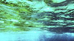 Sub-aquatica