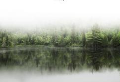 Canadian Fog