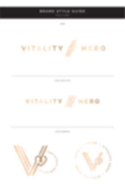 Vitality Hero Style Guide-01.jpg