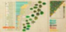 Arboretoom-repartition.jpg