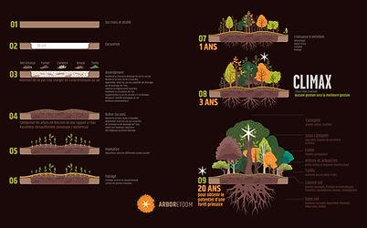Arboretoom - process.jpg
