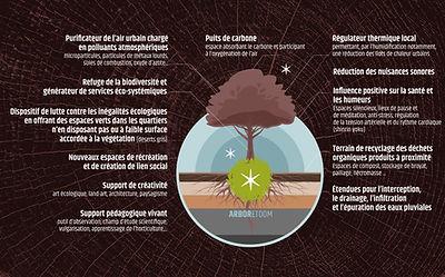 arboretoom-microforet-avantages.jpg