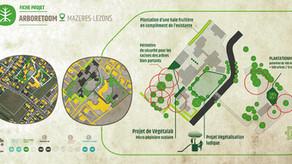 Projet Arboretoom dans une école