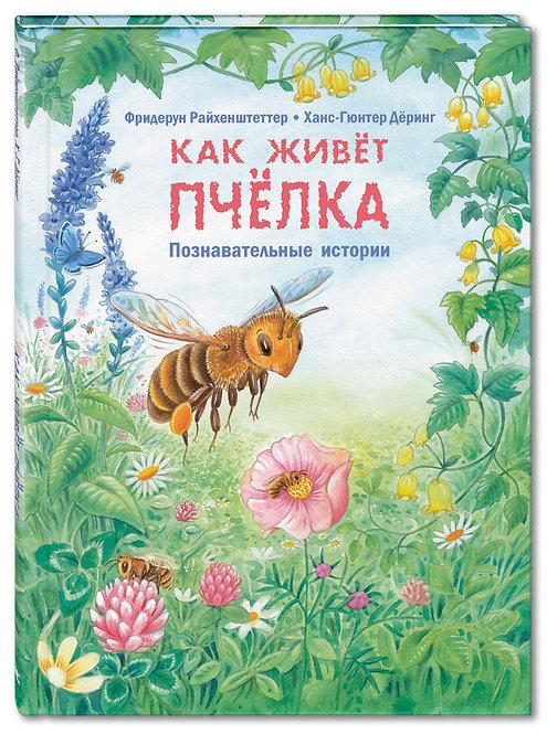 Райхенштеттер Ф. Как живёт пчёлка. Познавательные истории