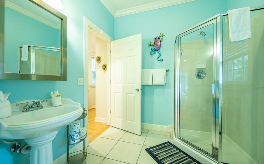 Bathroom and walk in shower