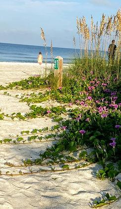 beach access flowers.jpg