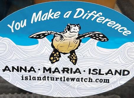 Turtle Nesting Season is in Full Swing on Anna Maria Island