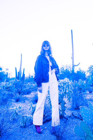 saguaro-046.jpg