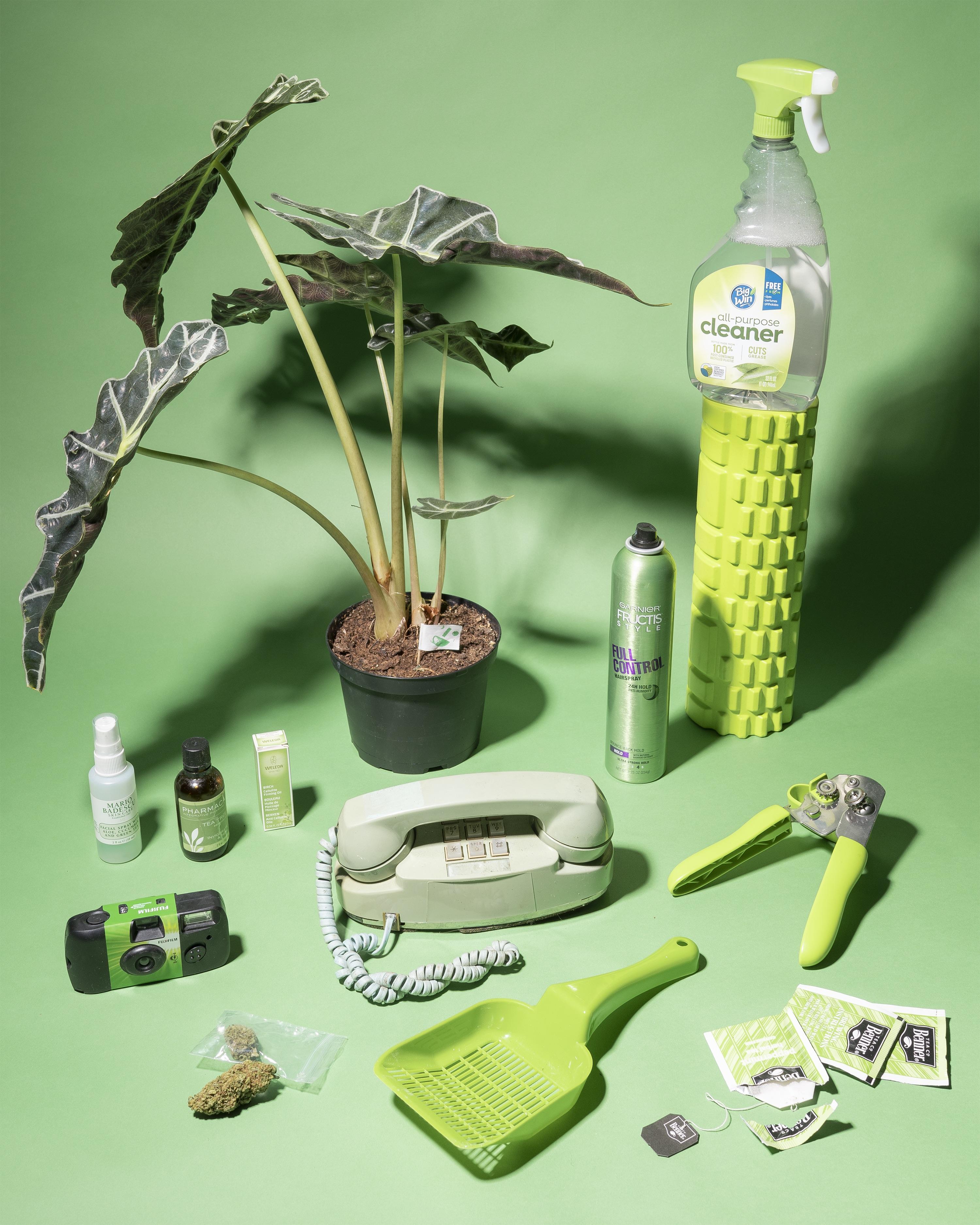green still life