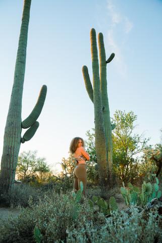 saguaro-073.jpg