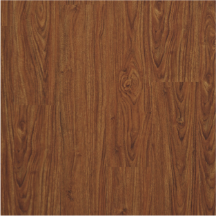 Chestnut Amber ACS723