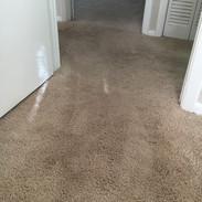 Carpet Restretched