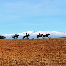 Riding our horses around Alháma de Gran