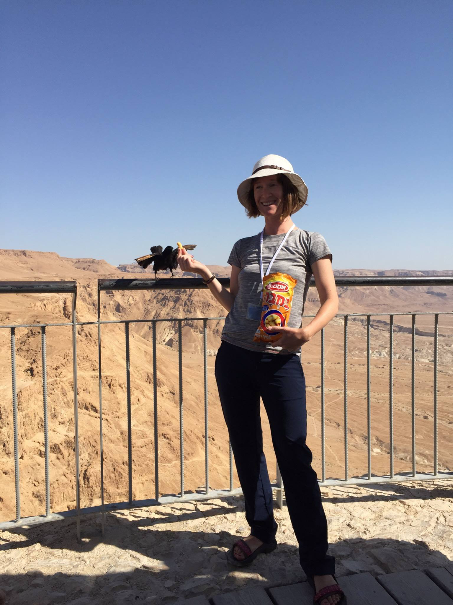Feeding birds at Masada