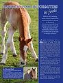 Angular Limb Deformities in Foals_Maxwel