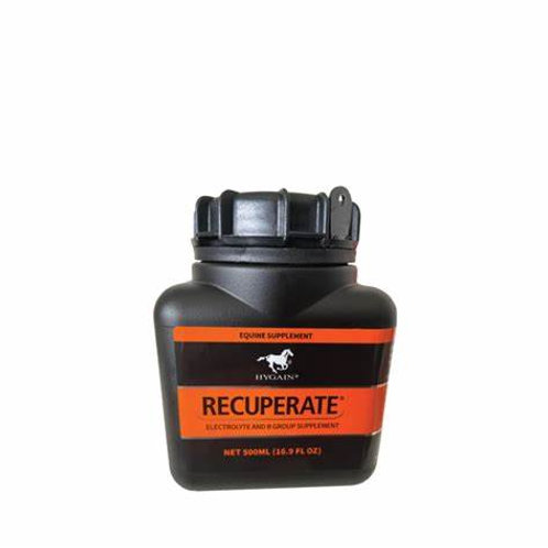 Hygain Recuperate