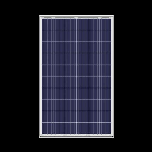 Solarshop Polycrystaline 275W