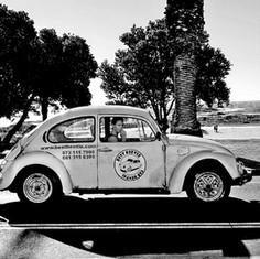 Cape Town Beetle Girl.jpg