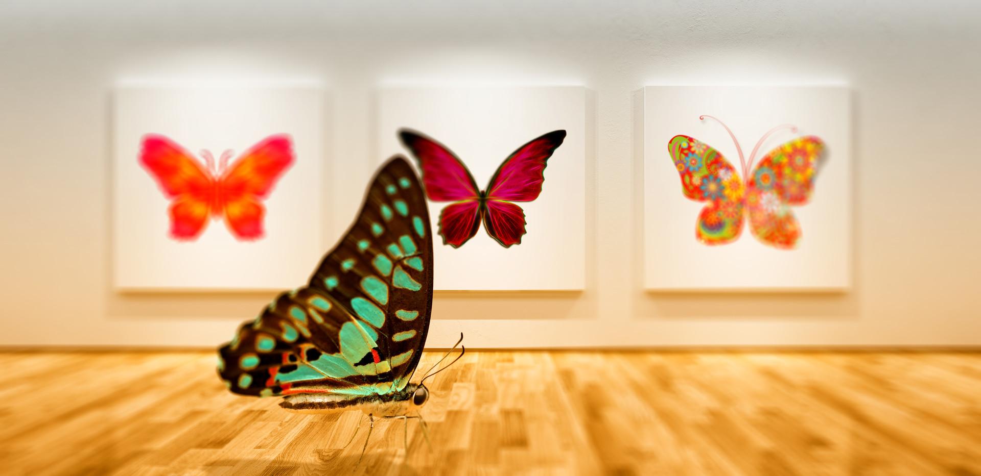 Butterfly Art Exhibit Orange.jpg