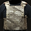 Thumbnail: Advanced Plate Carrier System