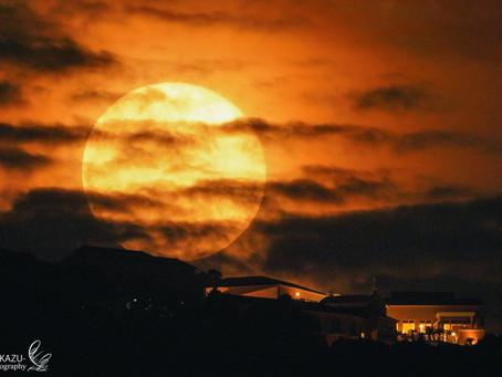 月を背景に