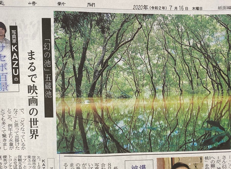 長崎新聞連載の掲載