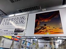 東京カメラ部写真展宣伝バナー写真採用