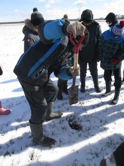 M. Caplette creuse un trou pour nous montrer son sol.