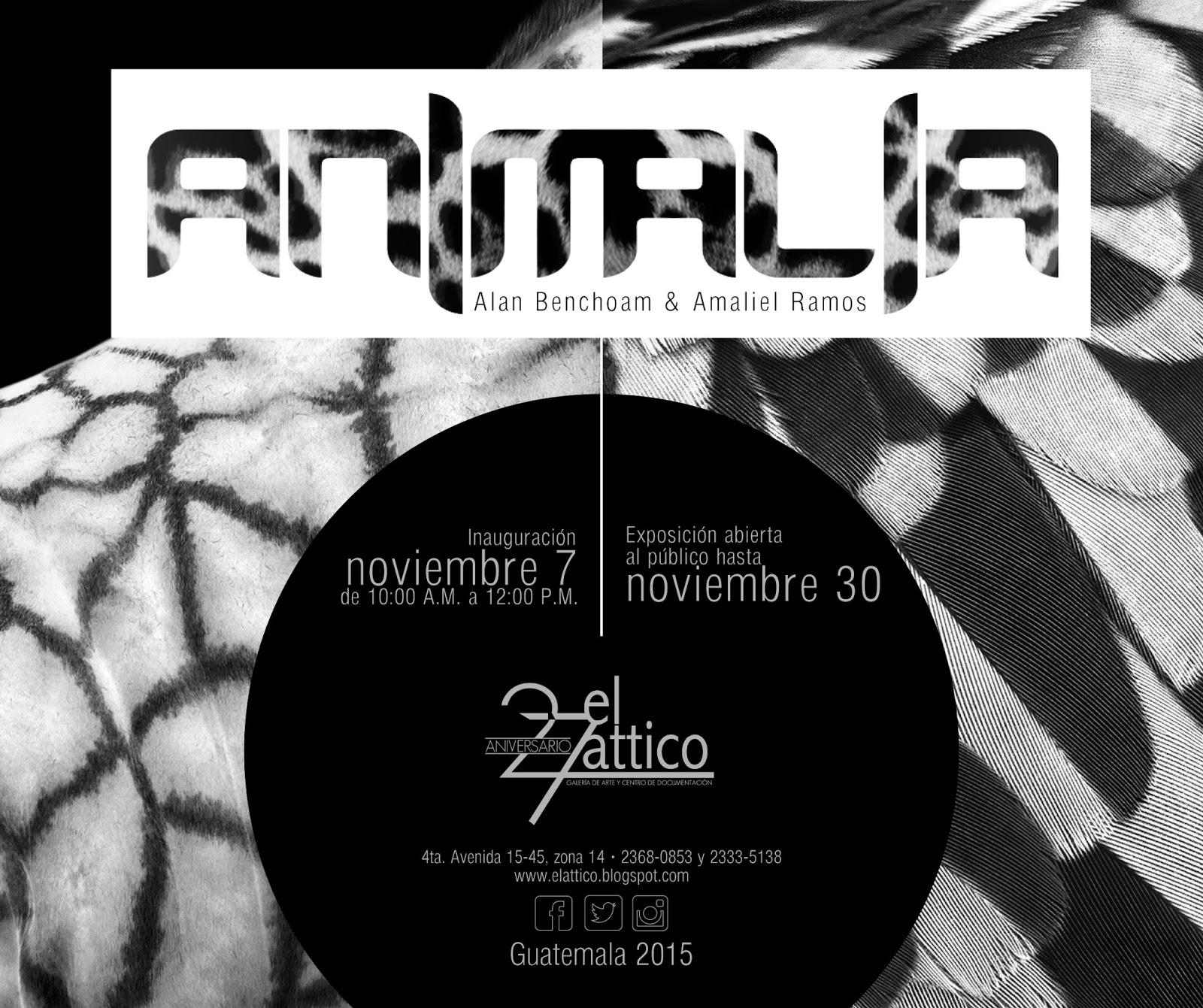 Invitación_animalia-02