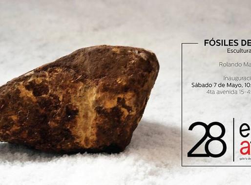 "Rolando Madrid ""Fósiles de Agua"""
