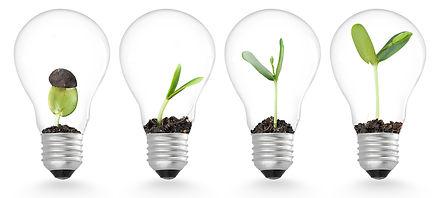 idea-growth.jpg