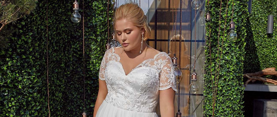 Plus Size Wedding Dress header1.JPG
