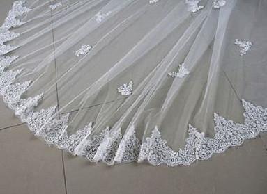Wedding Veil - Train Lace trim.JPG