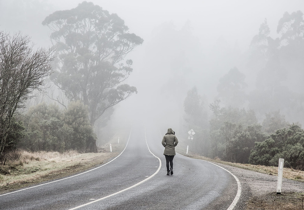 Tarra Bulga National Park, Suspension Bridge, Australia, Australian Hikes, Australian Winter Photo Opportunities, misty morning