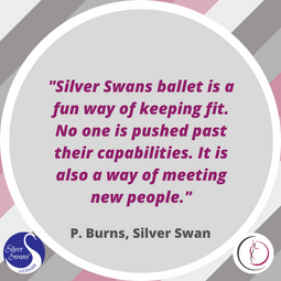 Silver Swans Review 3.png