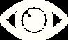 Eye-icon.png