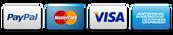 visa-mastercard-paypal-american express.