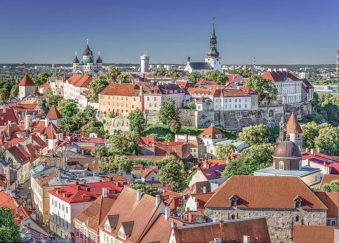 Vaibade tarnimine Leetu Poolast