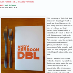 Review of DBL