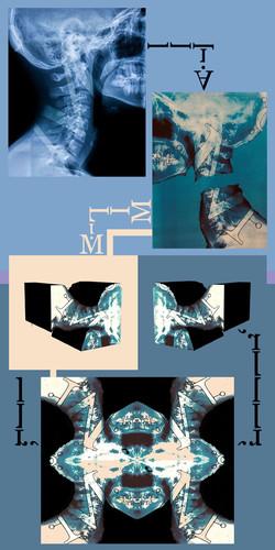Barwin & Orr 1.jpg