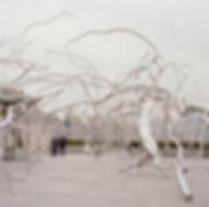 Isenor - Framed in Chaos.jpg