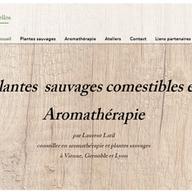 Conseiller en Aromathérapie et en plantes suavages à Vienne, Grenoble et Lyon Laurent Latil Sens essentielles