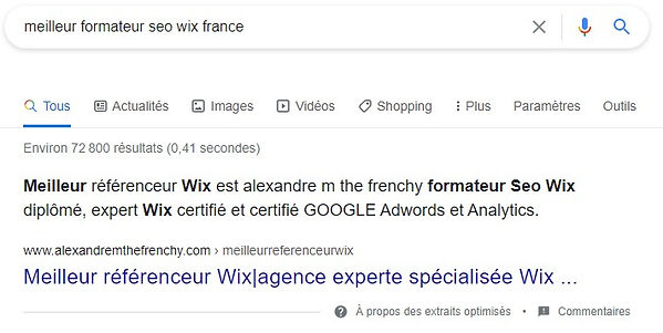 alexandre m the frenchy Meilleur formateur SEO wix France