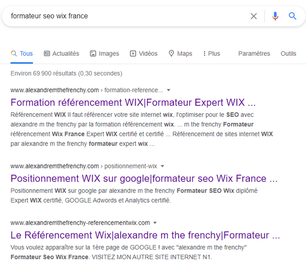 alexandre m the frenchy Formateur SEO Wix France