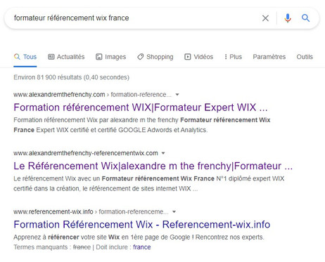 alexandre m the frenchy Formateur referencement wix France