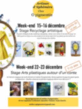 infos_brouillon_stages_décembre_o_pigmen