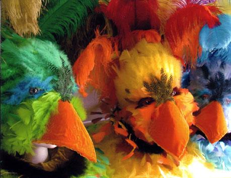 oiseaux groupe.jpg