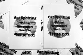 Cat-Spotting: My Feline Encounters Archive