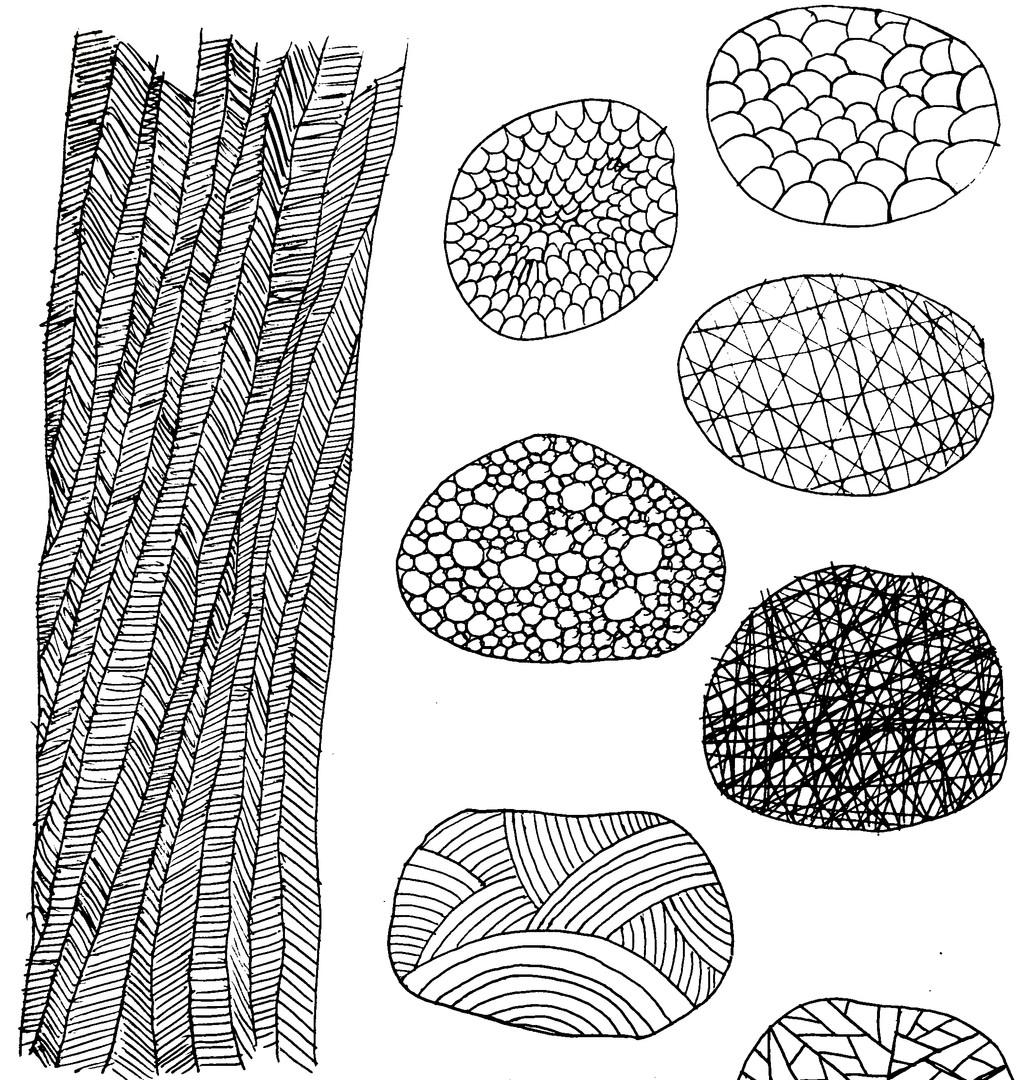 Drawings (59).JPG